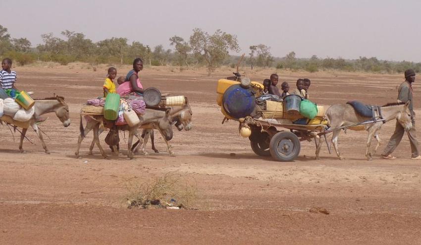 Cambio climático, migración y salud global: buscando el eslabón perdido