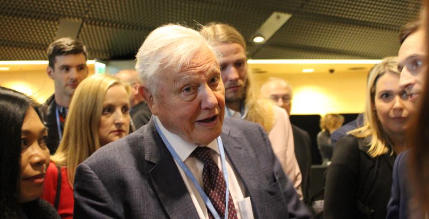 David Attenborough: participación activa en los tiempos de las redes sociales