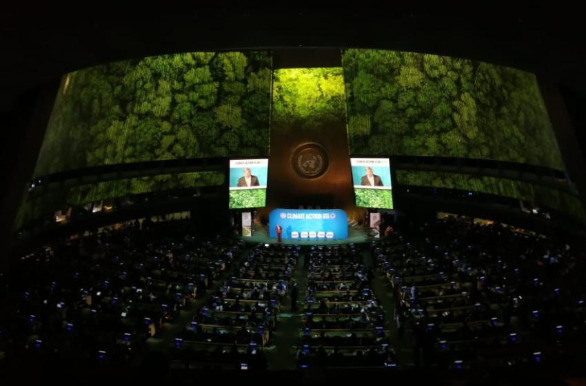 ¿Llenó las expectativas la Cumbre Mundial por la Acción Climática?